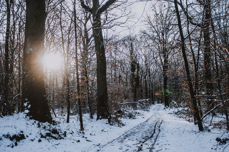 Winterfußsack-2